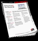 Executive enhanced User Interface for OBIEE