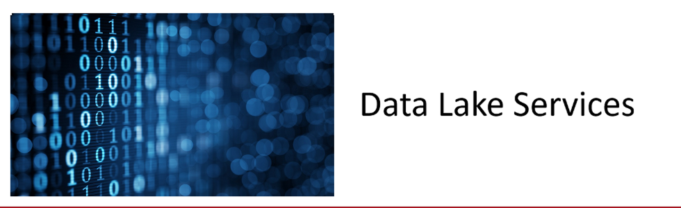 Data Lake Services